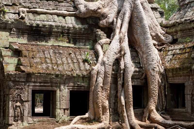 Temple de Ta Phrom images libres de droits