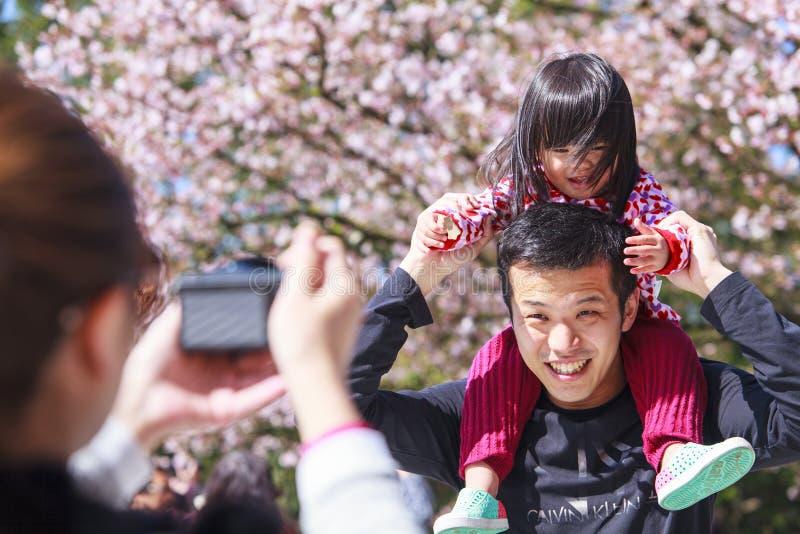 Temple de Tien-yuans avec des fleurs de cerisier dans la nouvelle ville de Taïpeh, Taïwan images libres de droits