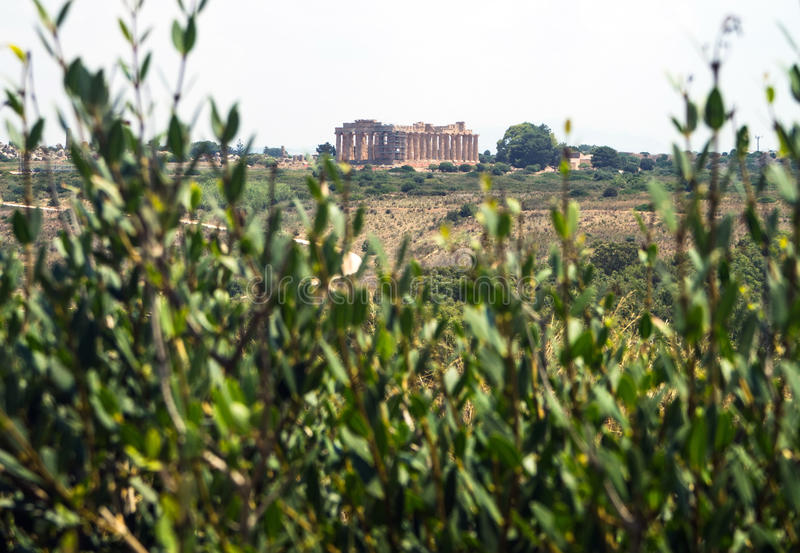 Temple E at Selinunte in Sicily is a greek temple of the doric o stock photos