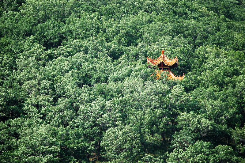 Download Temple in forest stock photo. Image of asia, golden, temple - 5937166