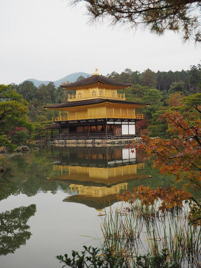 Kinkakuji temple with reflection on pond in Kyoto, Japan. Temple of the Golden Pavilion with red orange natural background in November, autumn season stock image