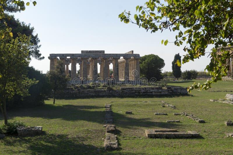 Temple grec Paestum image stock