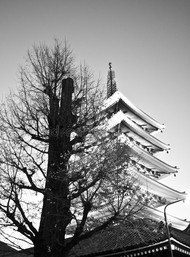 Download Temple In Japan, Tree And Pagoda Stock Photo - Image: 8405938