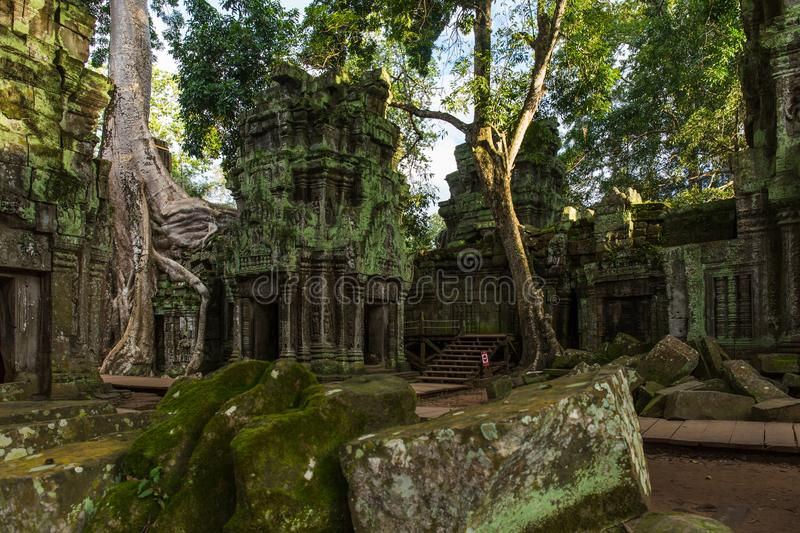 Temple in jungle - Ta Prohm temple. Ta Prohm temple is one temple in the jungle. The whole temple mixed up with the jungles. This temple is famous for its stock image