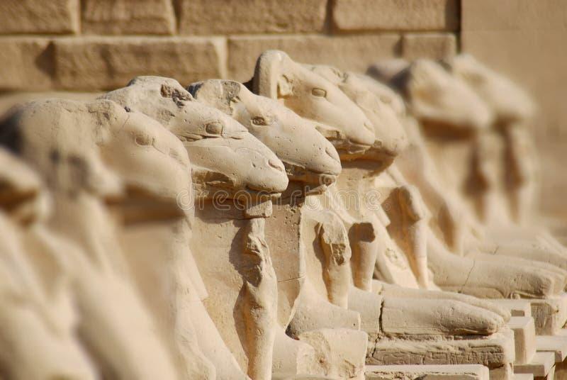 temple of Karnak royalty free stock photos