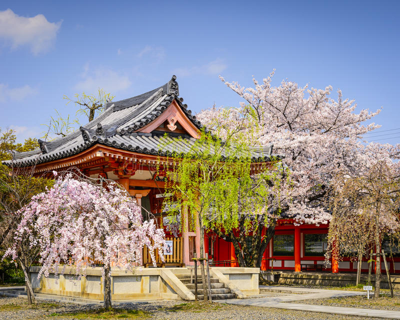 Temple in Kyoto. Kyoto, Japan at Sanjusangen-do in the springtime royalty free stock image