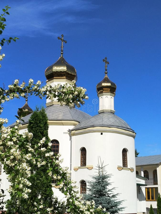 Temple orthodoxe dans le buisson de floraison de jasmin de premier plan photographie stock libre de droits