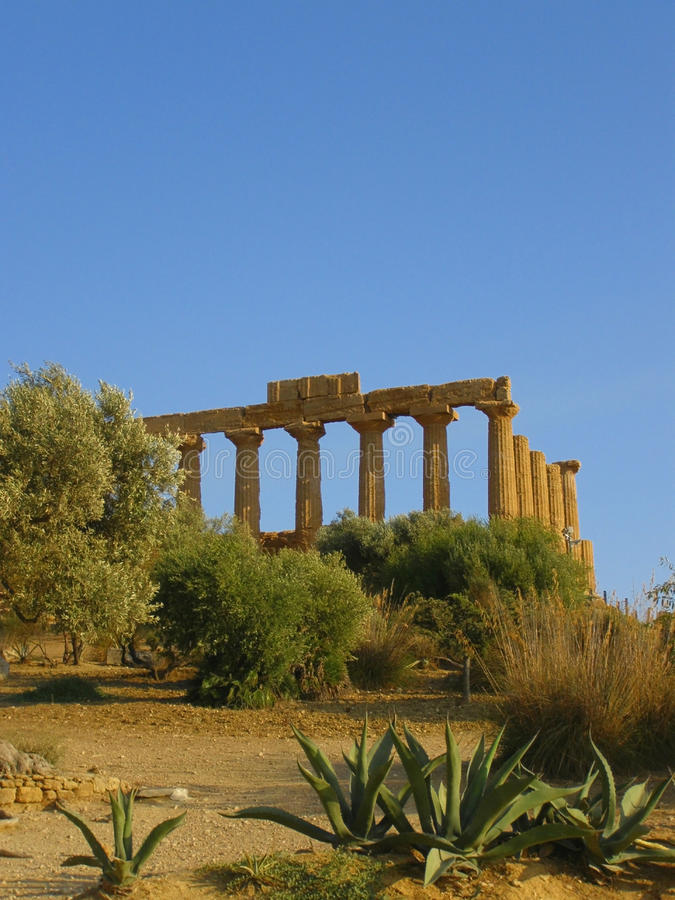 Temple in Sicily stock images