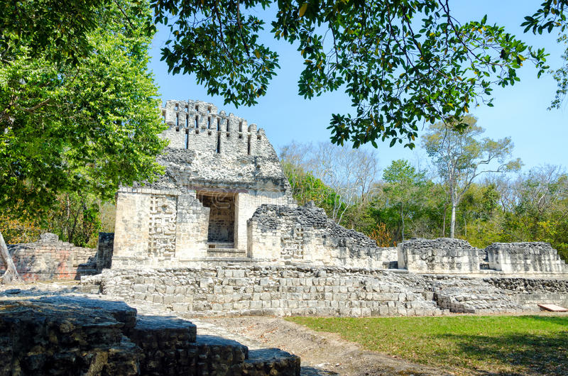 Temple with trees in Chicanna Mayan Ruins. View of temple between trees in Chicanna Mayan ruins in the Yucatan peninsula, Mexico royalty free stock image