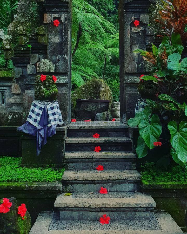 Stone entrance in temple. Sone entrance in temple in the Ubud jungle, Bali stock images