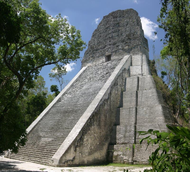 Temple V, Tikal Stock Photo