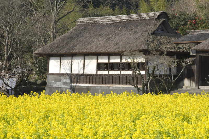 Download Temple With Yellow Flowers Royalty Free Stock Photography - Image: 2033467