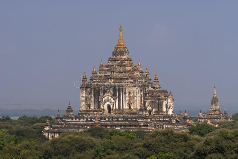 Templen av Bagan, Shwesandaw royaltyfri foto