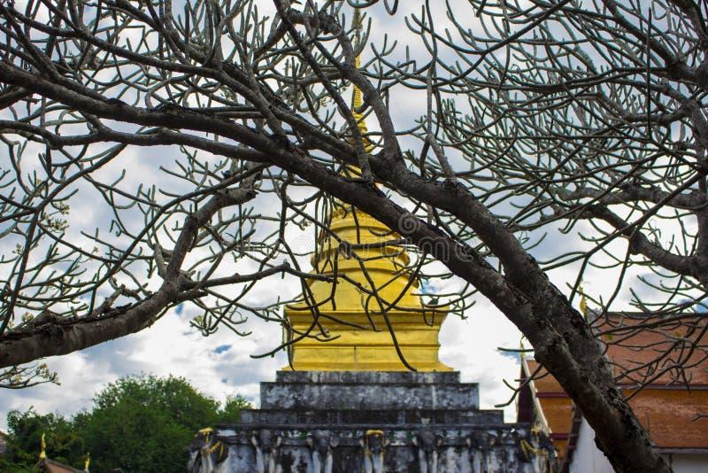 temples imagens de stock royalty free