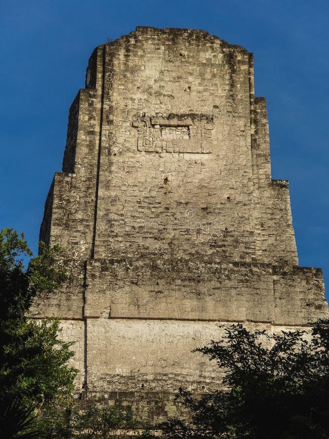 Temples de Maya de plaza de mamie ou de maire de plaza au parc national tikal photo stock
