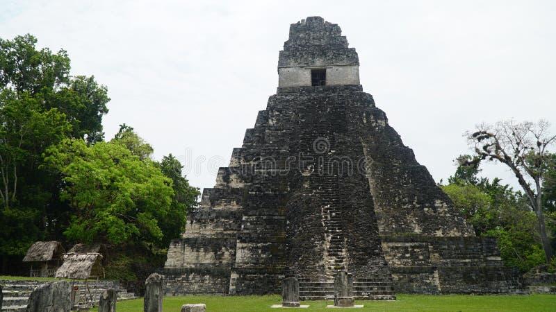 Temples de Tikal, parc national de Tikal, Guatemala images libres de droits