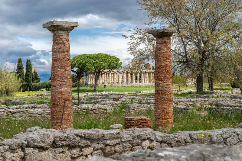 Templet av Athena i Paestum, Italien royaltyfri bild
