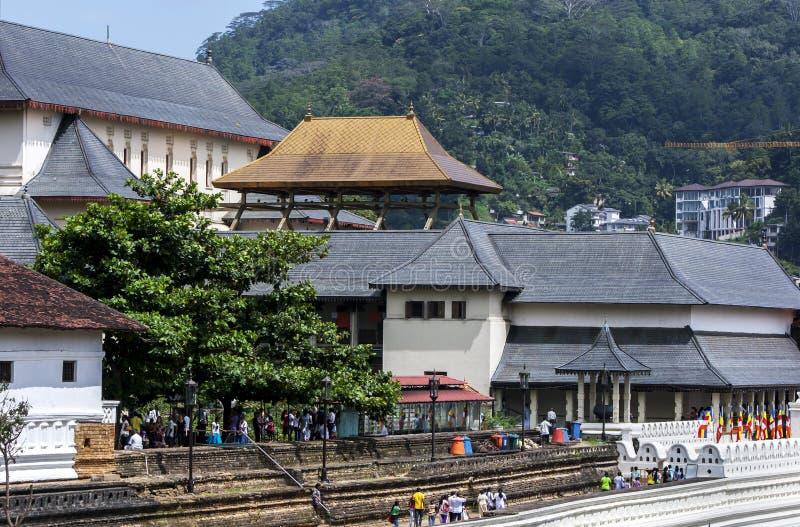 Templet av den sakrala tandreliken royaltyfria foton