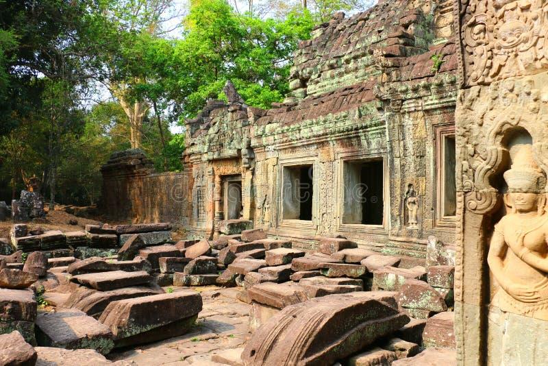Templet av Ta Prohm, Siem Reap, Cambodja royaltyfri bild