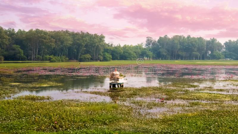 Templet doppade i en sjö med massor av lotusblommablommor royaltyfria bilder