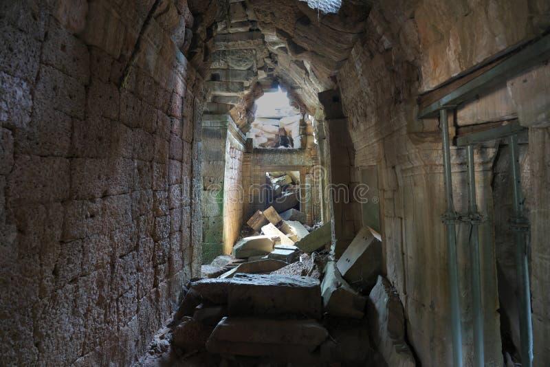 Templo abandonado de TA Prohm en Siem Reap, Camboya foto de archivo