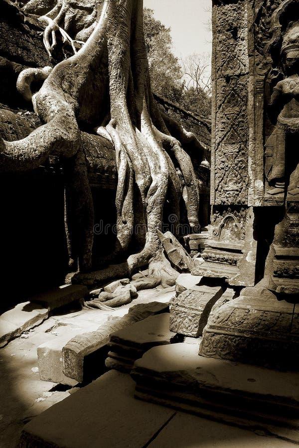 Templo Angkor del Buddhism imagen de archivo libre de regalías
