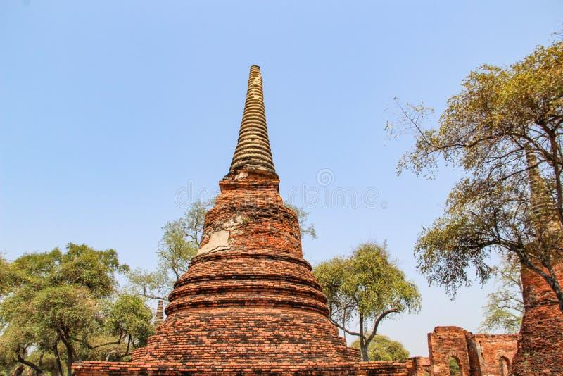 Templo antiguo de Buda en Ayutthaya Bangkok, Tailandia foto de archivo