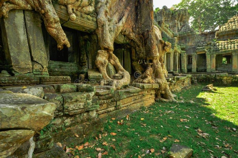 Templo budista antiguo del khmer en el complejo de Angkor Wat, Siem Reap C imagenes de archivo
