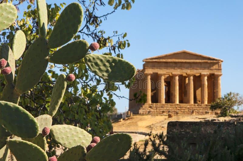 Templo de Concordia fotos de archivo