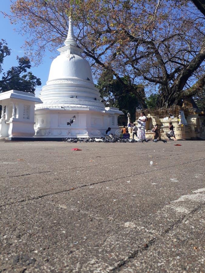Templo de Gatambe imagem de stock royalty free