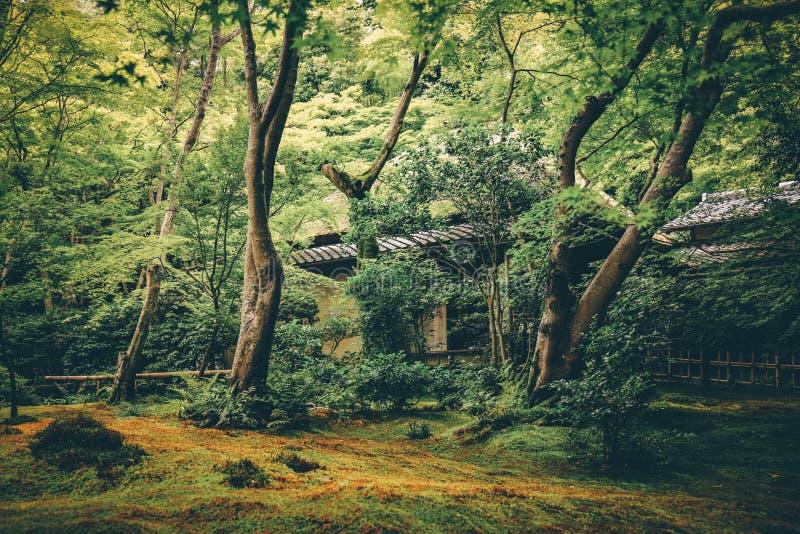 Templo de Gion, Kyoto, Jap?n foto de archivo