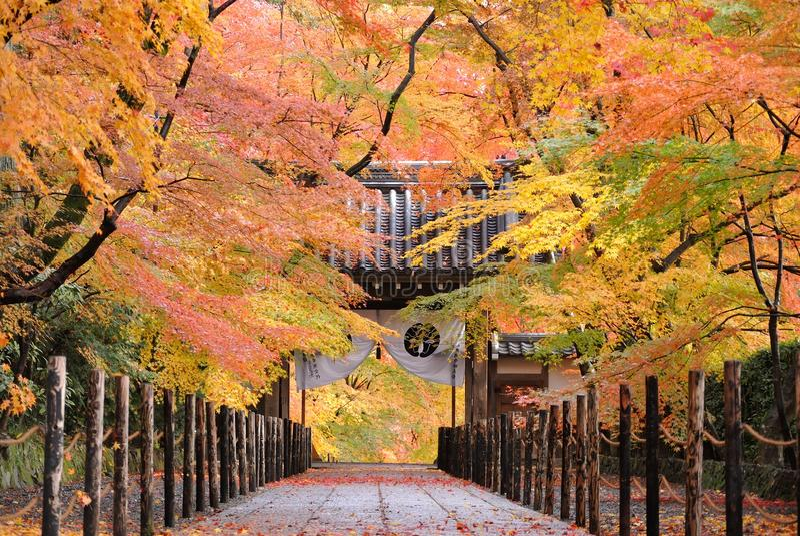 Templo de Japón de la vendimia imagenes de archivo