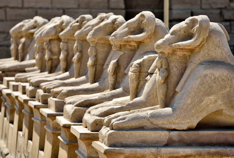Templo de Karnak em Egipto fotos de stock royalty free