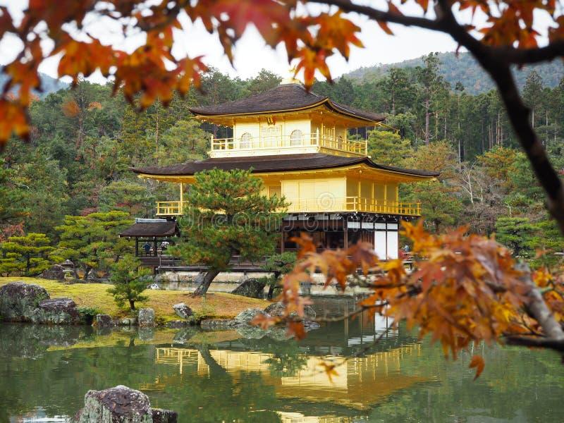 Templo de Kinkakuji, Japan& x27; el destino turístico famoso de s, es hermoso y pacífico foto de archivo
