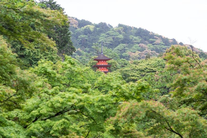 Templo de Kiyomizu-dera na mola em Kyoto, Japão fotos de stock royalty free
