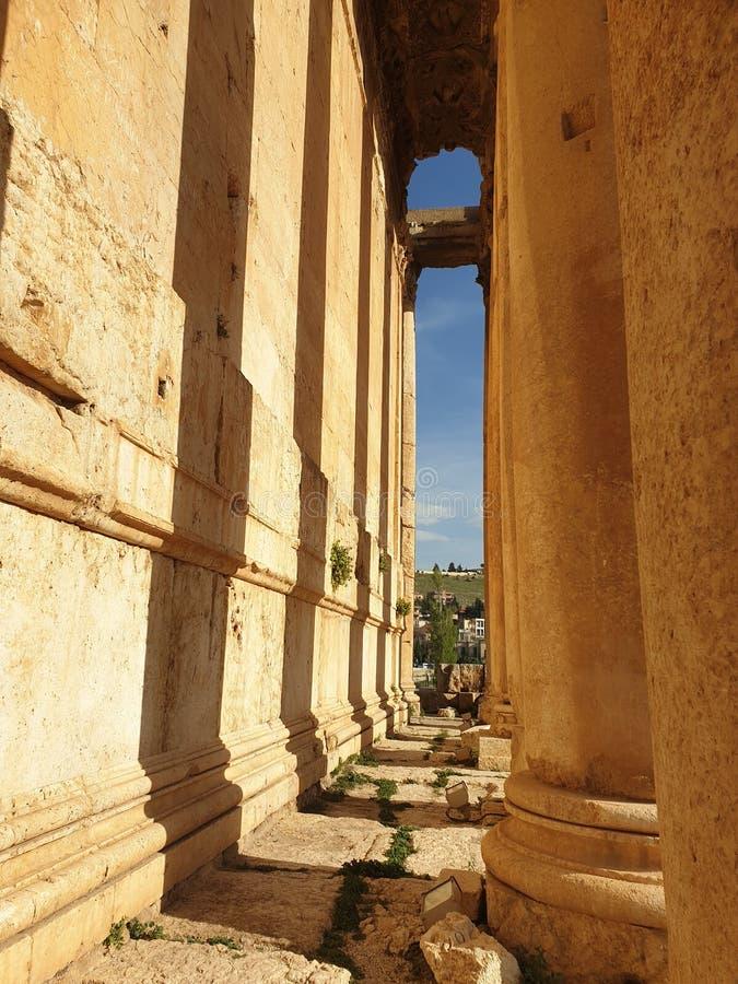 Templo de Líbano Baalbek do templo de Baalbek do bacchus do dia ensolarado pillarway da coluna do bacchus imagens de stock royalty free