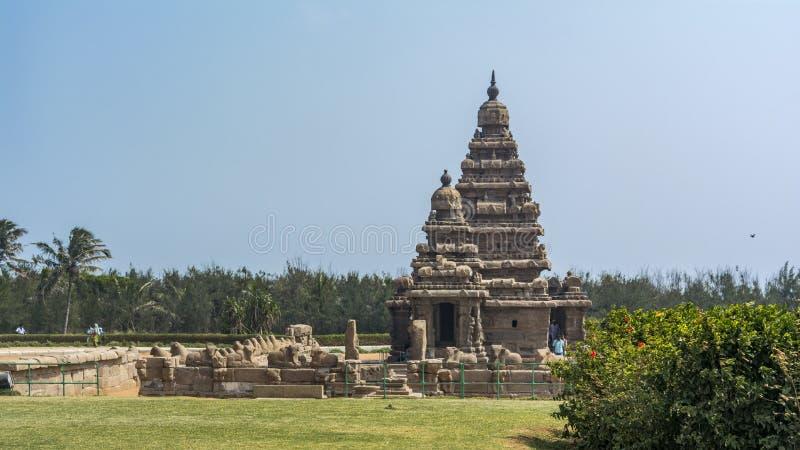 Templo de la orilla en Mahabalipuram con el césped en frente fotografía de archivo libre de regalías