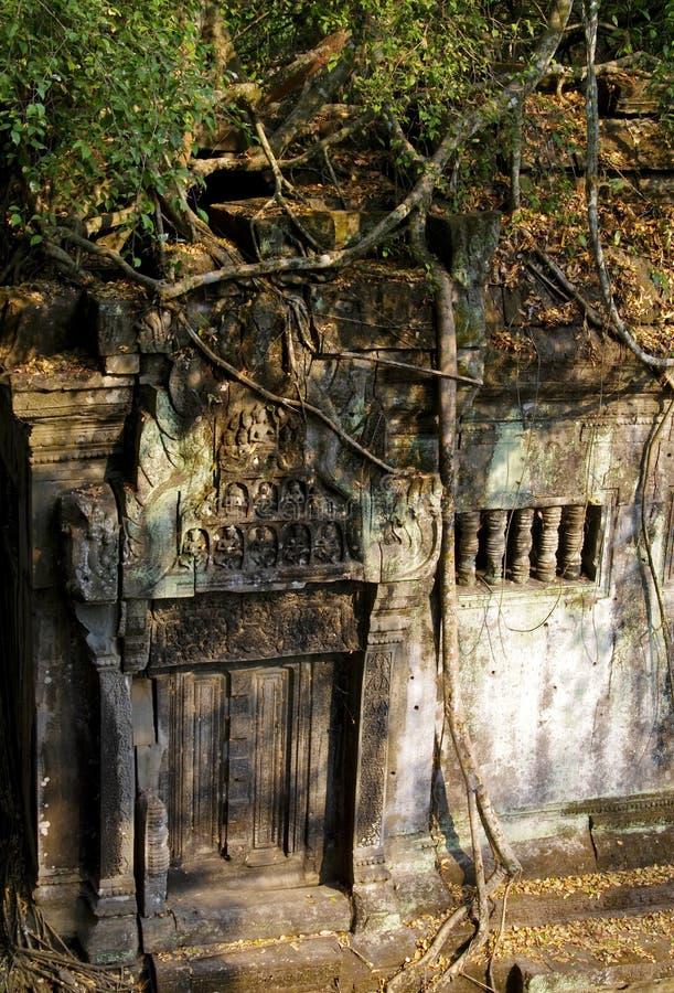 Templo de la selva imágenes de archivo libres de regalías