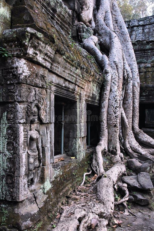 Templo de la selva imagenes de archivo
