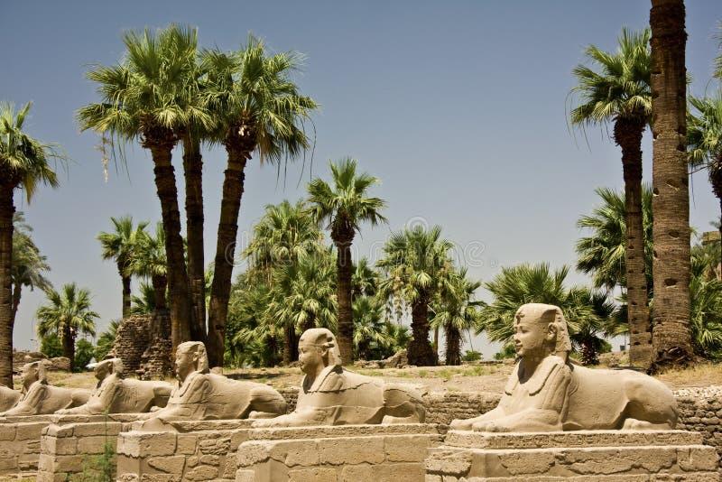 Templo de Luxor fotografia de stock