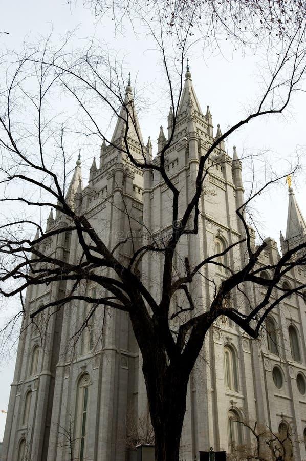 Templo de Mormon fotografia de stock