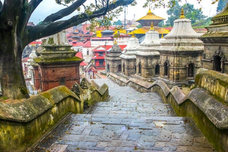 Templo de Pashupatinath, Kathmandu, Nepal fotos de stock royalty free