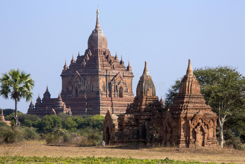 Templo de Sulamani - Bagan - Myanmar imagem de stock