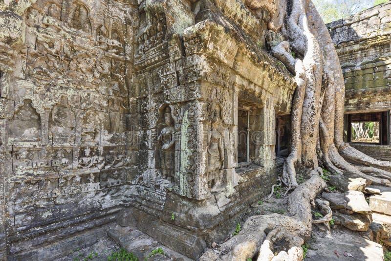 Templo de Ta Prohm foto de stock