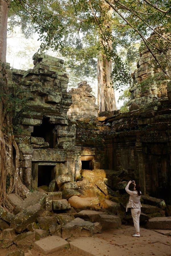 Templo de Ta Prohm - Siem Reap - Camboja - Angkor antigo fotos de stock