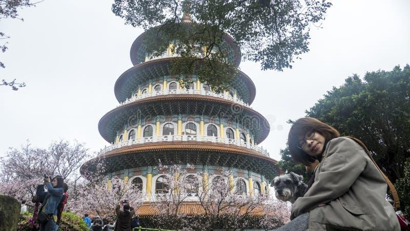 Templo de Tien-Yuan con la flor de cerezo en Taipei fotos de archivo libres de regalías