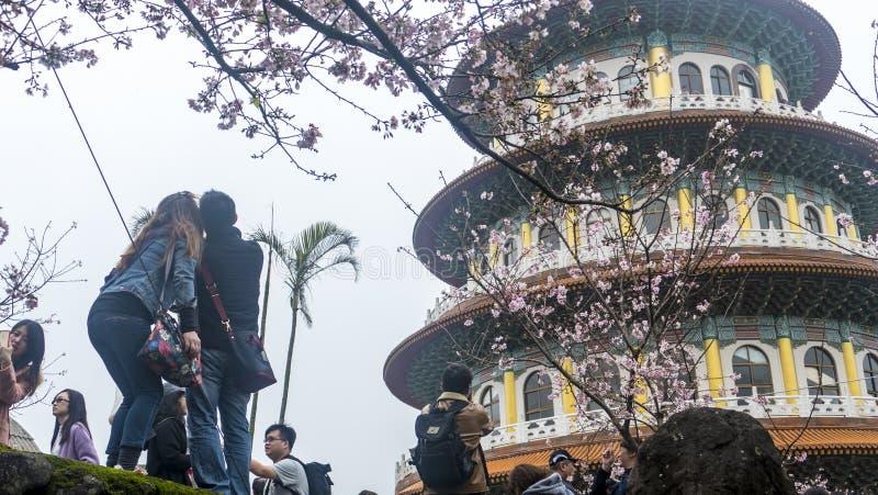 Templo de Tien-Yuan con la flor de cerezo en Taipei foto de archivo libre de regalías