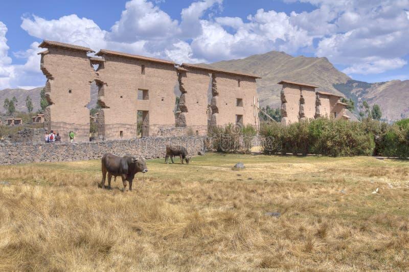 Templo de Wiracocha fotos de stock