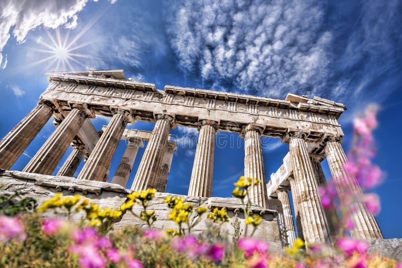 Templo del Parthenon durante el tiempo de primavera en la acrópolis ateniense, Grecia foto de archivo
