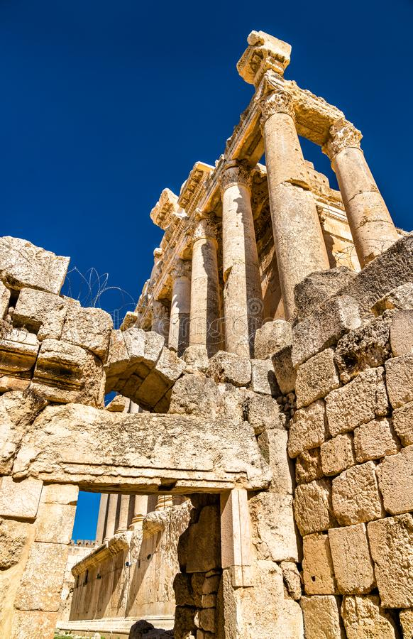 Templo do Baco em Baalbek, Líbano foto de stock